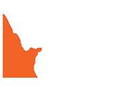 republic warrior sports logo